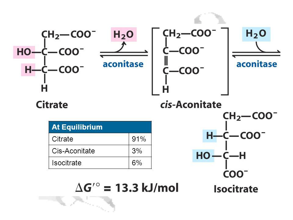 At Equilibrium Citrate91% Cis-Aconitate3% Isocitrate6%