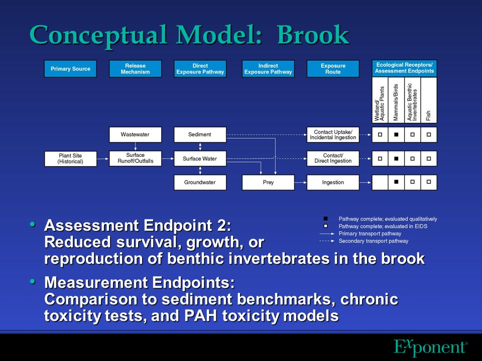 Conceptual Model: Brook Assessment Endpoint 2: Reduced survival, growth, or reproduction of benthic invertebrates in the brook Assessment Endpoint 2: Reduced survival, growth, or reproduction of benthic invertebrates in the brook Measurement Endpoints: Comparison to sediment benchmarks, chronic toxicity tests, and PAH toxicity models Measurement Endpoints: Comparison to sediment benchmarks, chronic toxicity tests, and PAH toxicity models