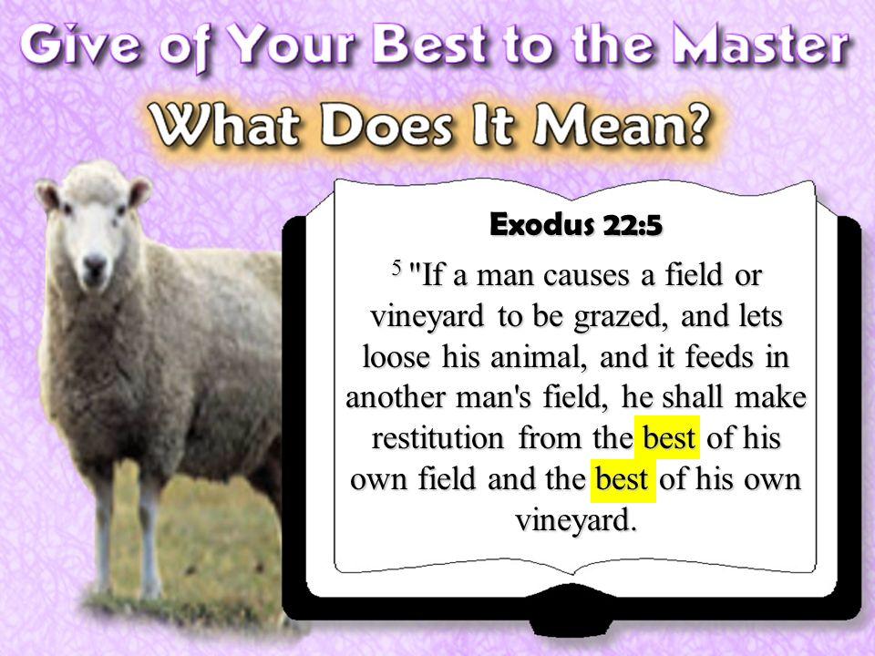 Exodus 22:5 5