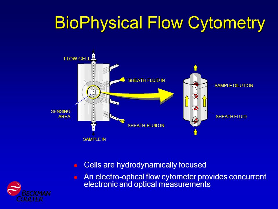 BioPhysical Flow Cytometry Cells are hydrodynamically focused An electro-optical flow cytometer provides concurrent electronic and optical measurement
