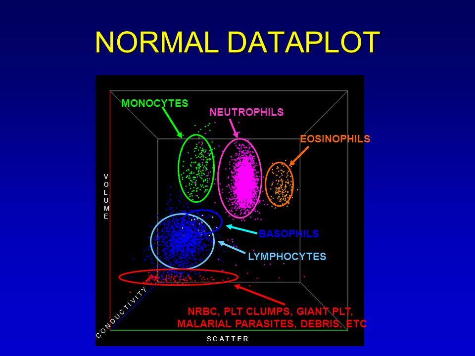 NORMAL DATAPLOT MONOCYTES NEUTROPHILS EOSINOPHILS LYMPHOCYTES BASOPHILS NRBC, PLT CLUMPS, GIANT PLT, MALARIAL PARASITES, DEBRIS, ETC C O N D U C T I V