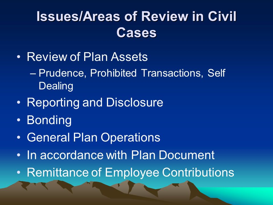 Issues/Areas of Review in Civil Cases Review of Plan Assets –Prudence, Prohibited Transactions, Self Dealing Reporting and Disclosure Bonding General