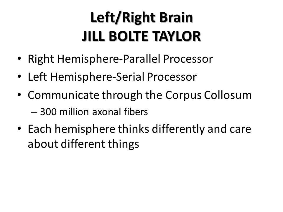 Left/Right Brain JILL BOLTE TAYLOR Right Hemisphere-Parallel Processor Left Hemisphere-Serial Processor Communicate through the Corpus Collosum – 300