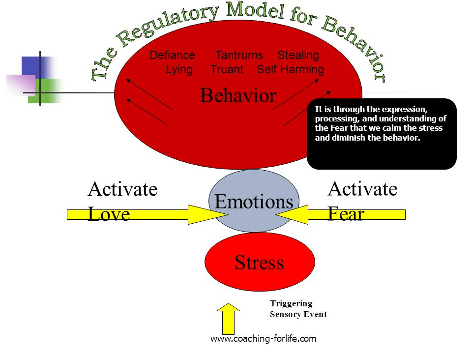 Behavior Emotions Stress Activate Love Activate Fear It is through the expression, processing, and understanding of the Fear that we calm the stress a
