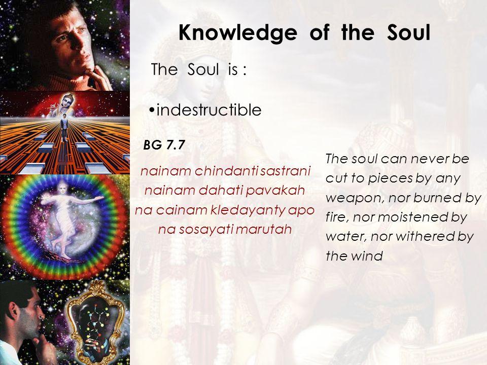 Knowledge of the Soul The Soul is : indestructible BG 7.7 nainam chindanti sastrani nainam dahati pavakah na cainam kledayanty apo na sosayati marutah