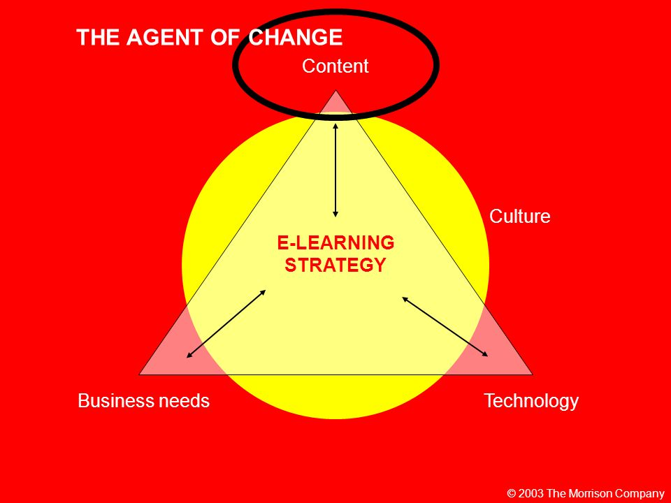 © 2003 The Morrison Company E-LEARNING STRATEGY Content TechnologyBusiness needs Culture THE AGENT OF CHANGE