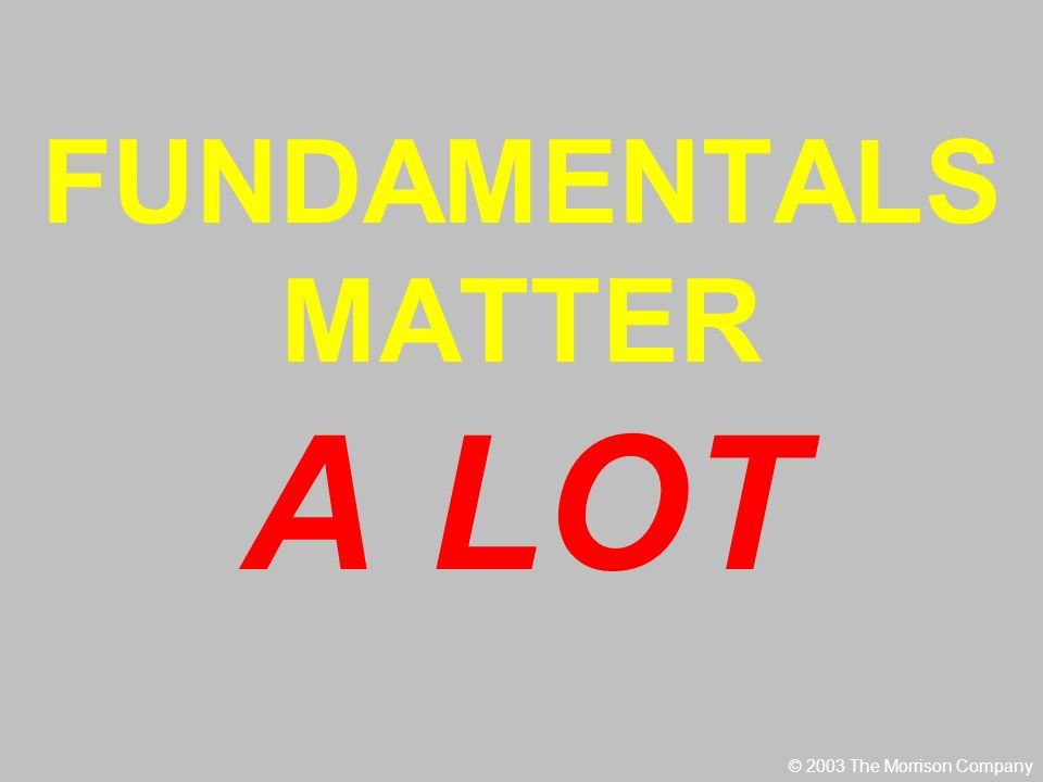 FUNDAMENTALS MATTER A LOT © 2003 The Morrison Company