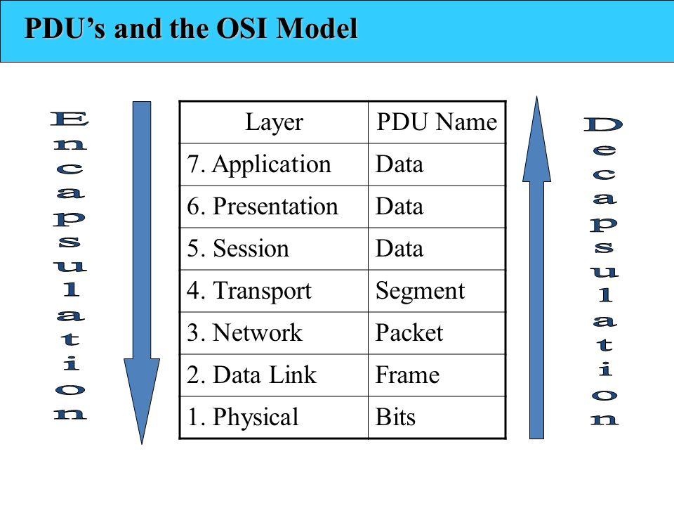 LayerPDU Name 7. ApplicationData 6. PresentationData 5. SessionData 4. TransportSegment 3. NetworkPacket 2. Data LinkFrame 1. PhysicalBits PDUs and th