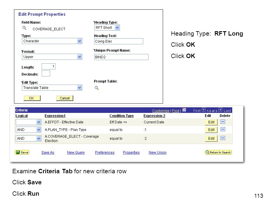 113 Heading Type: RFT Long Click OK Examine Criteria Tab for new criteria row Click Save Click Run