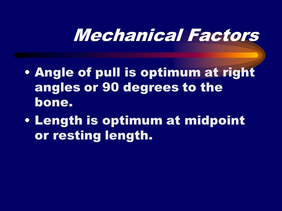 Mechanical Factors Angle of pull is optimum at right angles or 90 degrees to the bone. Length is optimum at midpoint or resting length.