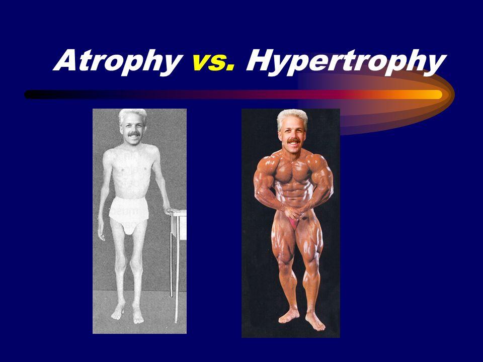 Atrophy vs. Hypertrophy
