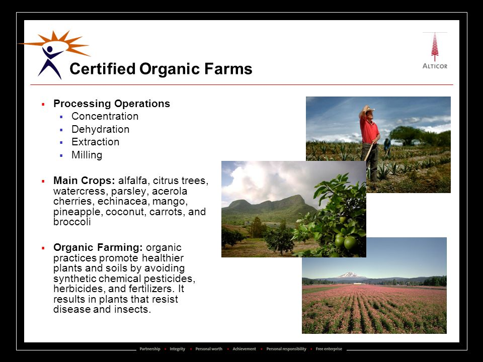 Certified Organic Farms Processing Operations Concentration Dehydration Extraction Milling Main Crops: alfalfa, citrus trees, watercress, parsley, ace