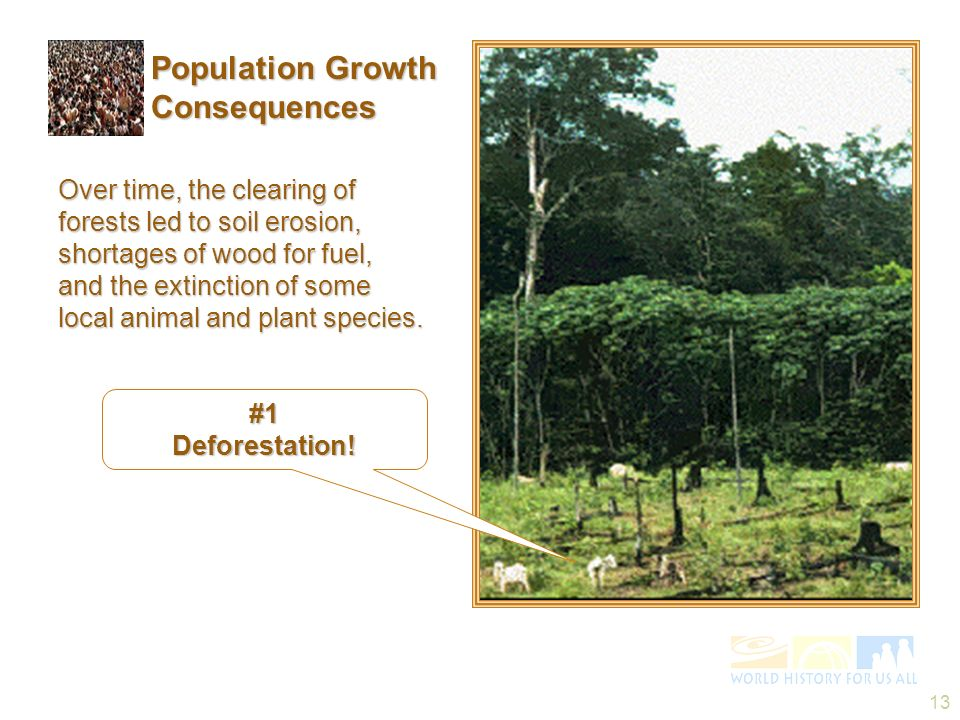 13 Over time, the clearing of forests led to soil erosion, shortages of wood for fuel, and the extinction of some local animal and plant species. #1De