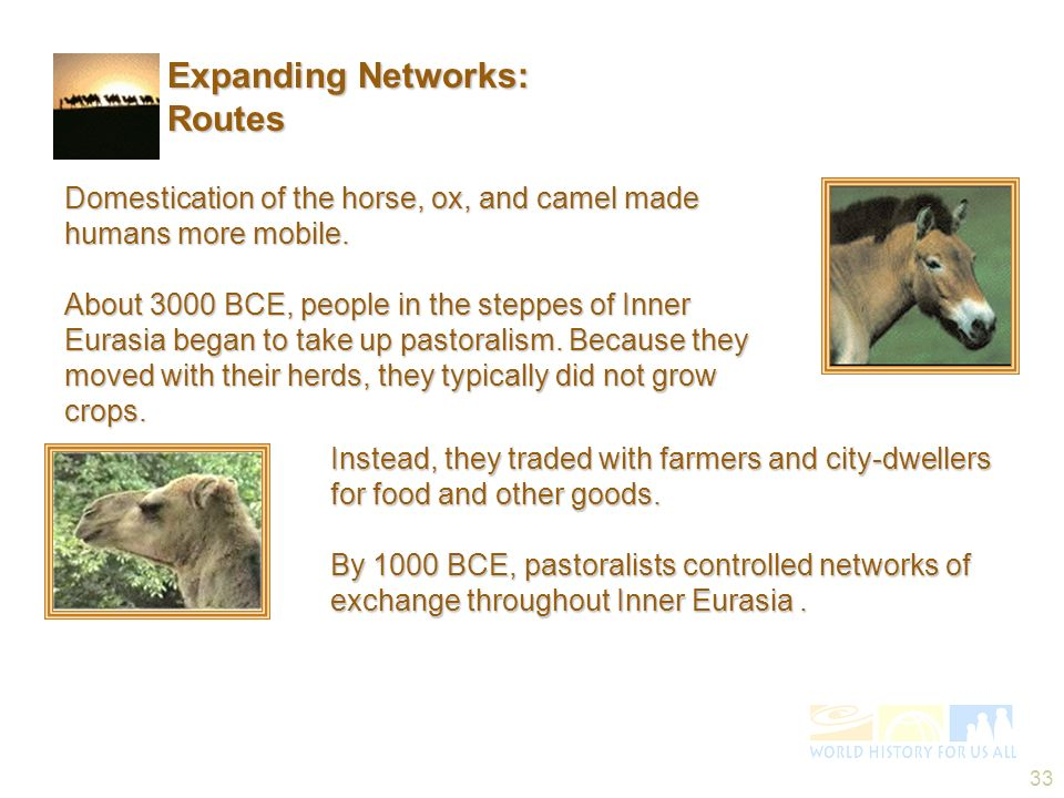 33 Instead, they traded with farmers and city-dwellers for food and other goods. By 1000 BCE, pastoralists controlled networks of exchange throughout