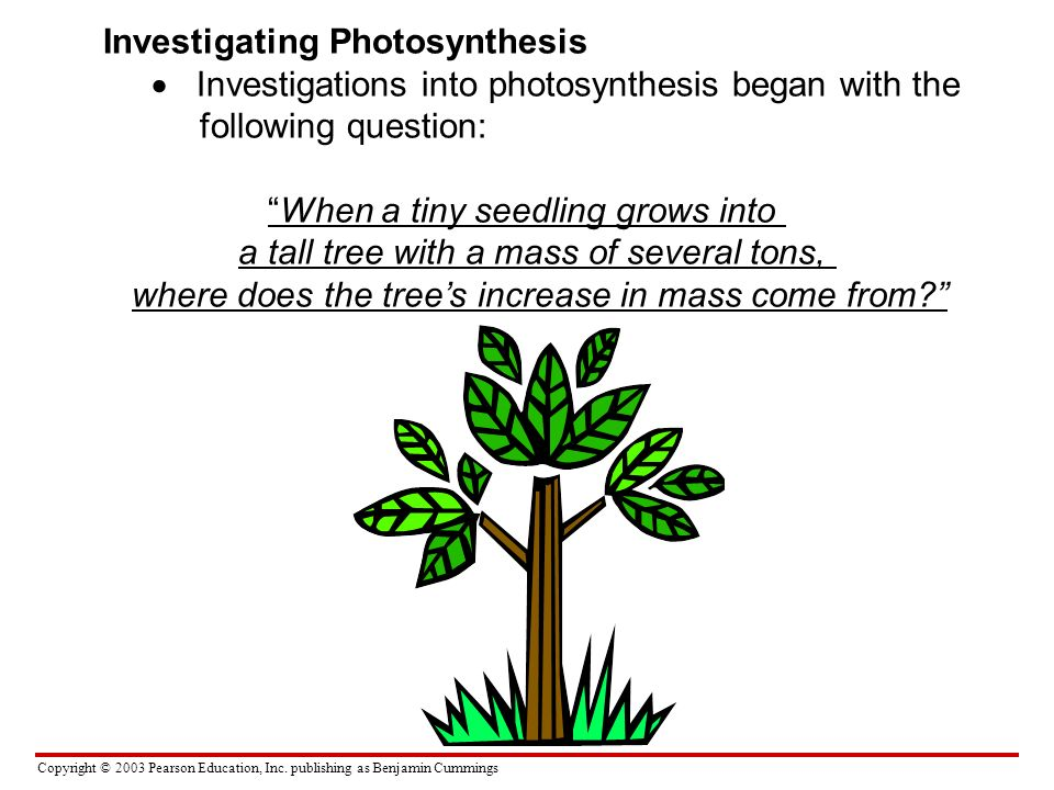 Copyright © 2003 Pearson Education, Inc. publishing as Benjamin Cummings Investigating Photosynthesis Investigations into photosynthesis began with th