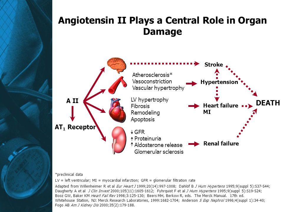 Angiotensin II Plays a Central Role in Organ Damage A II Atherosclerosis* Vasoconstriction Vascular hypertrophy LV hypertrophy Fibrosis Remodeling Apoptosis Stroke DEATH GFR Proteinuria Aldosterone release Glomerular sclerosis Renal failure Hypertension Heart failure MI AT 1 Receptor *preclinical data LV = left ventricular; MI = myocardial infarction; GFR = glomerular filtration rate Adapted from Willenheimer R et al Eur Heart J 1999;20(14):997-1008; Dahlöf B J Hum Hypertens 1995;9(suppl 5):S37-S44; Daugherty A et al J Clin Invest 2000;105(11):1605-1612; Fyhrquist F et al J Hum Hypertens 1995;9(suppl 5):S19-S24; Booz GW, Baker KM Heart Fail Rev 1998;3:125-130; Beers MH, Berkow R, eds.