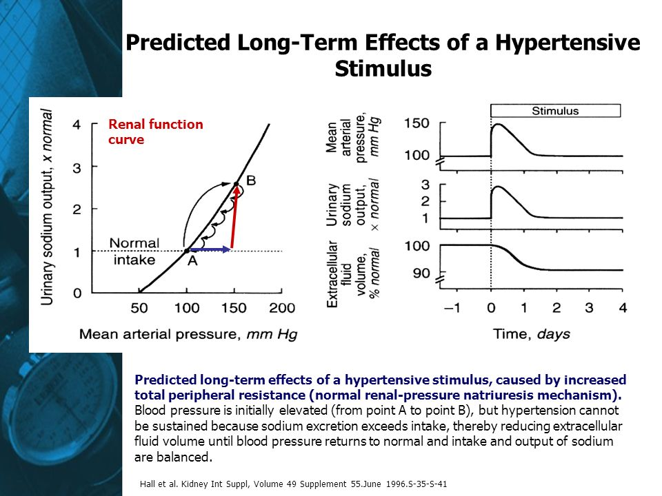 Predicted Long-Term Effects of a Hypertensive Stimulus Renal function curve Predicted long-term effects of a hypertensive stimulus, caused by increased total peripheral resistance (normal renal-pressure natriuresis mechanism).