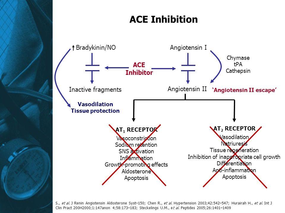 ACE Inhibition S., et al. J Renin Angiotensin Aldosterone Syst–150; Chen R., et al. Hypertension 2003;42:542–547; Hurairah H., et al. Int J Clin Pract