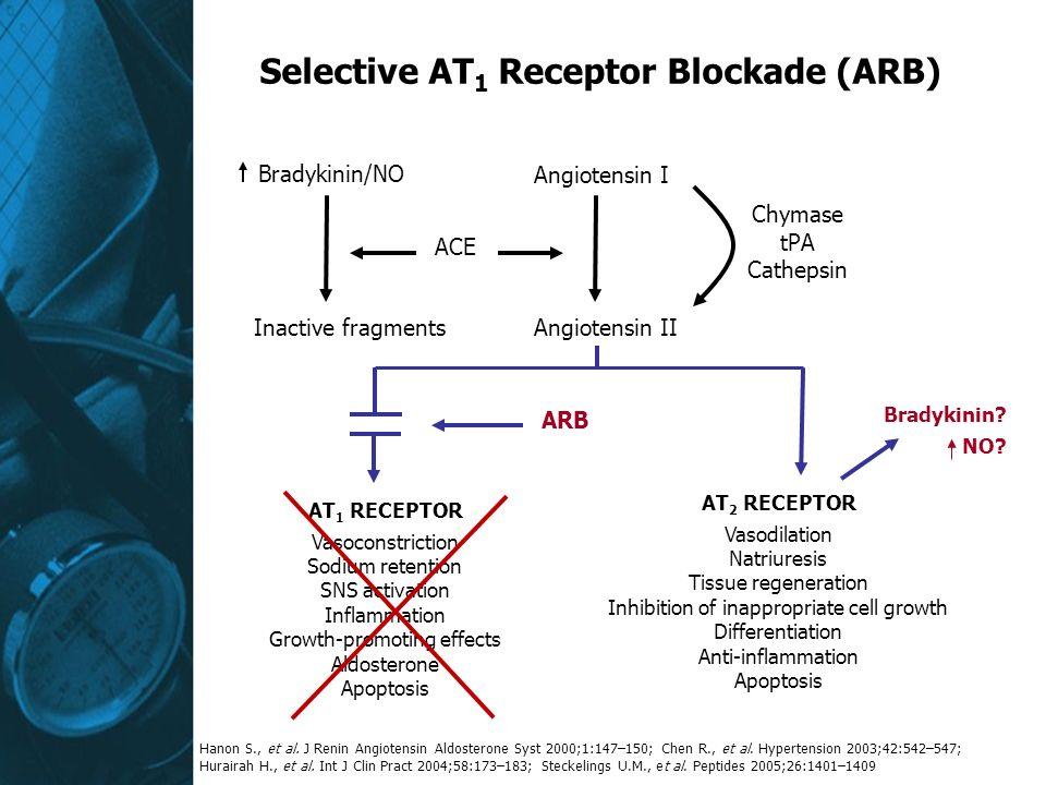 Selective AT 1 Receptor Blockade (ARB) Bradykinin/NO Inactive fragments ACE Angiotensin I Angiotensin II Chymase tPA Cathepsin ARB Bradykinin.