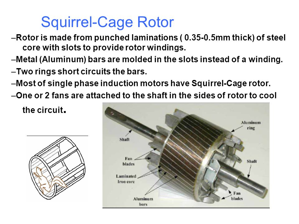 Squirrel-Cage Rotor –Rotor is made from punched laminations ( 0.35-0.5mm thick) of steel core with slots to provide rotor windings. –Metal (Aluminum)