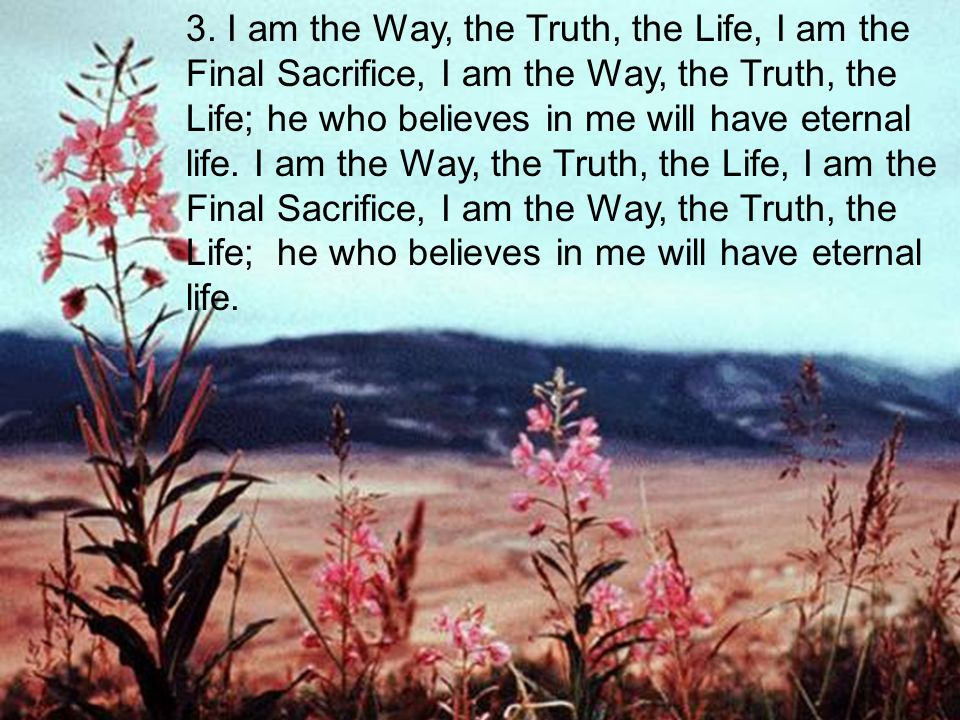 3. I am the Way, the Truth, the Life, I am the Final Sacrifice, I am the Way, the Truth, the Life; he who believes in me will have eternal life. I am