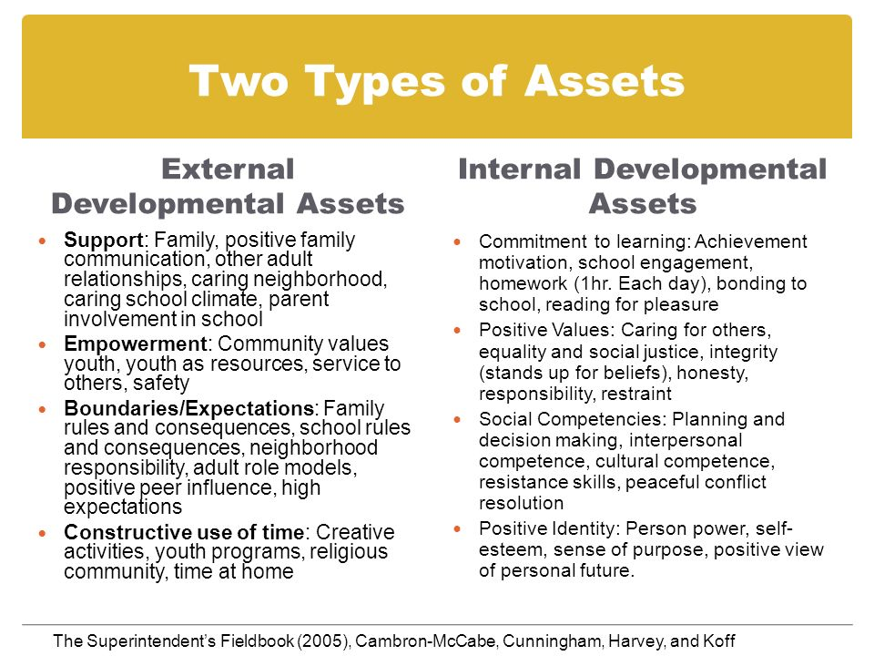 Two Types of Assets External Developmental Assets Support: Family, positive family communication, other adult relationships, caring neighborhood, cari