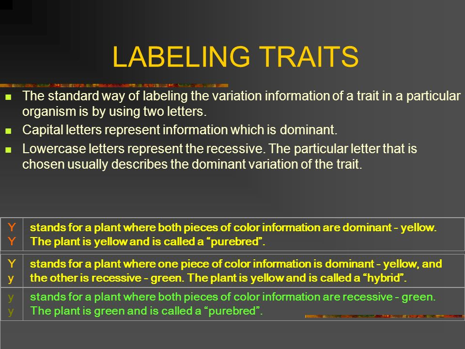 LABELING TRAITS The standard way of labeling the variation information of a trait in a particular organism is by using two letters. Capital letters re