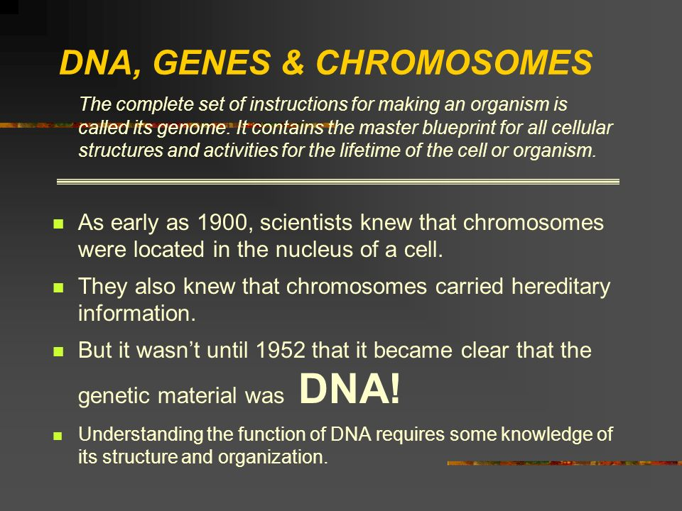 DNA, GENES & CHROMOSOMES The complete set of instructions for making an organism is called its genome. It contains the master blueprint for all cellul