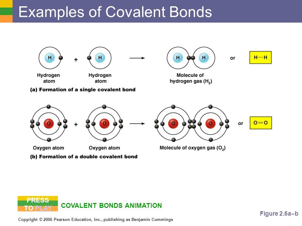 Copyright © 2006 Pearson Education, Inc., publishing as Benjamin Cummings COVALENT BONDS ANIMATION Examples of Covalent Bonds Figure 2.6a–b PRESS TO P