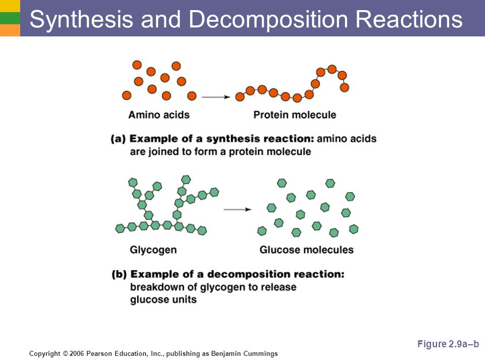 Copyright © 2006 Pearson Education, Inc., publishing as Benjamin Cummings Synthesis and Decomposition Reactions Figure 2.9a–b