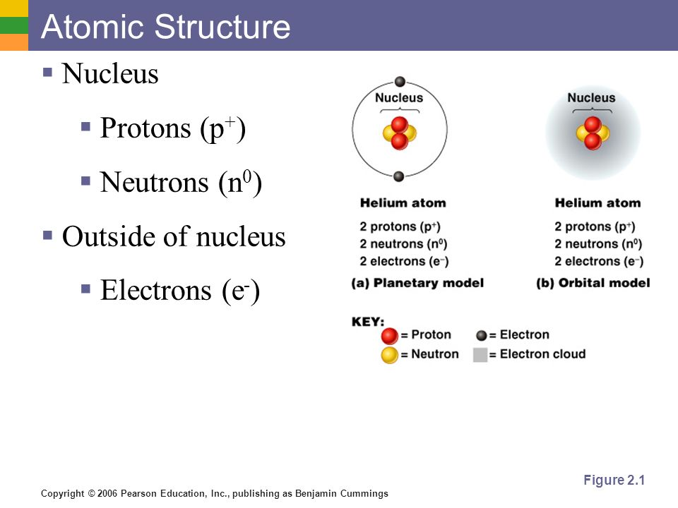 Copyright © 2006 Pearson Education, Inc., publishing as Benjamin Cummings Atomic Structure Nucleus Protons (p + ) Neutrons (n 0 ) Outside of nucleus E
