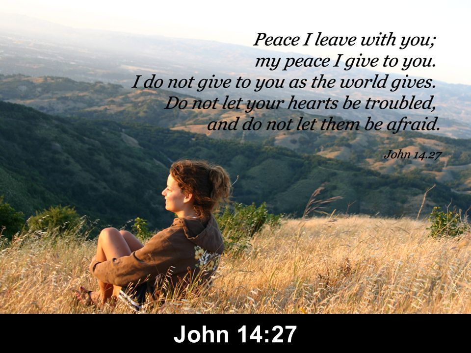 Spirit Ministries (John 14:15-31) Counsels & teaches (15-21) Enables obedience & grants peace (22-31) Counsels & teaches (15-21) Enables obedience & grants peace (22-31)