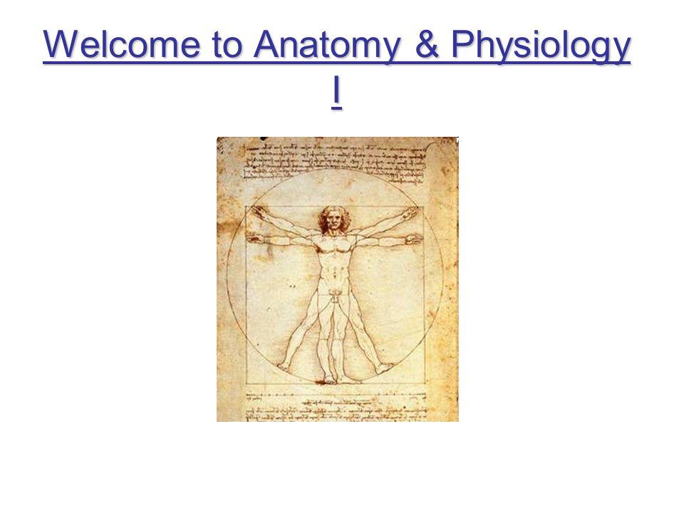 Welcome to Anatomy & Physiology I