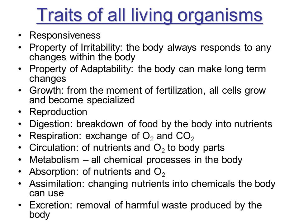 Traits of all living organisms Responsiveness Property of Irritability: the body always responds to any changes within the body Property of Adaptabili
