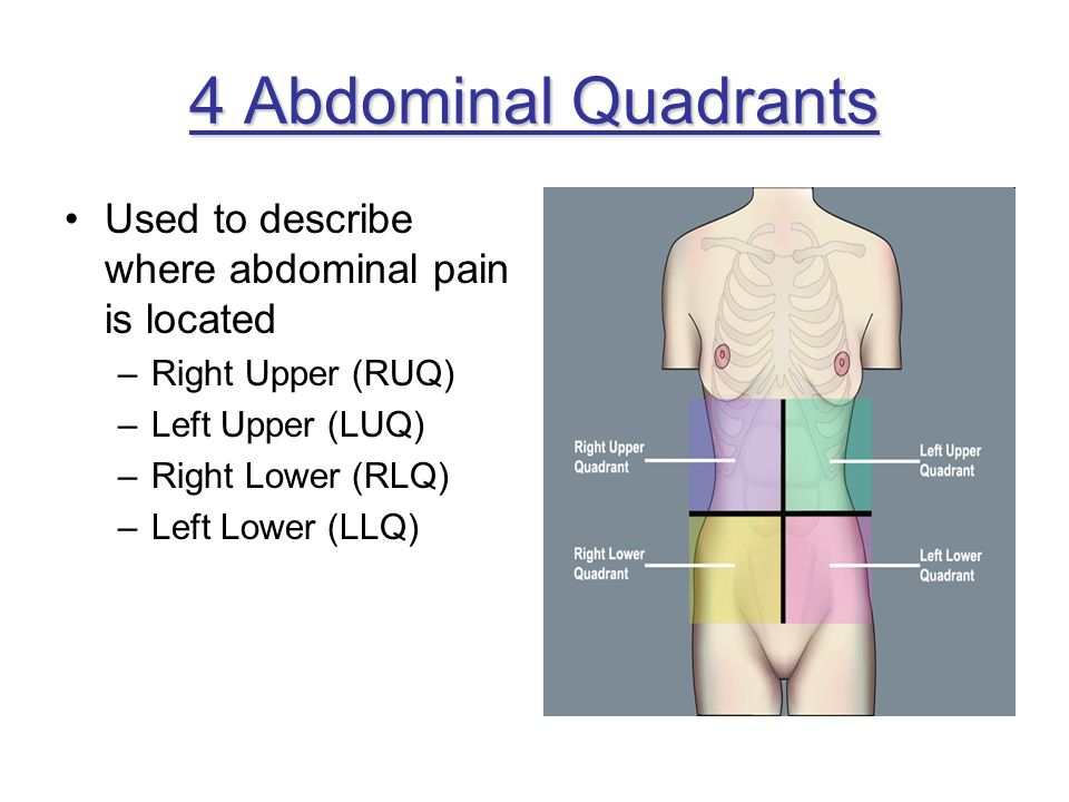 4 Abdominal Quadrants Used to describe where abdominal pain is located –Right Upper (RUQ) –Left Upper (LUQ) –Right Lower (RLQ) –Left Lower (LLQ)
