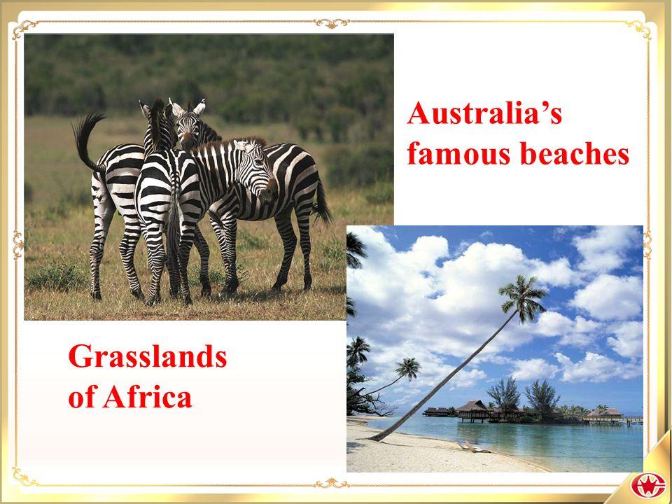 Australias famous beaches Grasslands of Africa
