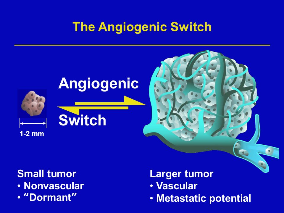 The Angiogenic Switch Small tumor Nonvascular Dormant Larger tumor Vascular Metastatic potential 1-2 mm Angiogenic Switch