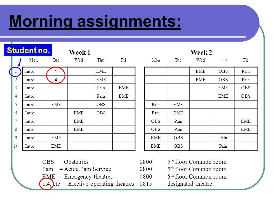 Morning assignments: Week 1 Week 2 MonTueWedThuFriMonTueWed Thu Fri 1 Intro 1 EME OBSPain 2 Intro 4 EME OBSPain 3 IntroPainEME OBS 4 IntroPainEME OBS