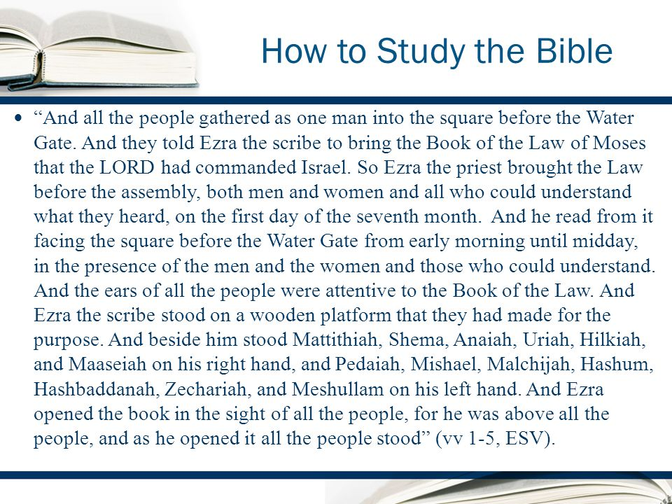 How to Study the Bible And all the people gathered as one man into the square before the Water Gate.