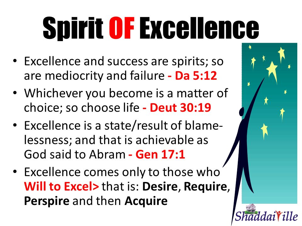 Spirit OF Excellence Excellence and success are spirits; so are mediocrity and failure - Da 5:12 Whichever you become is a matter of choice; so choose