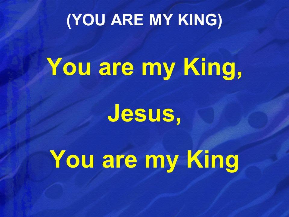 You are my King, Jesus, You are my King (YOU ARE MY KING)