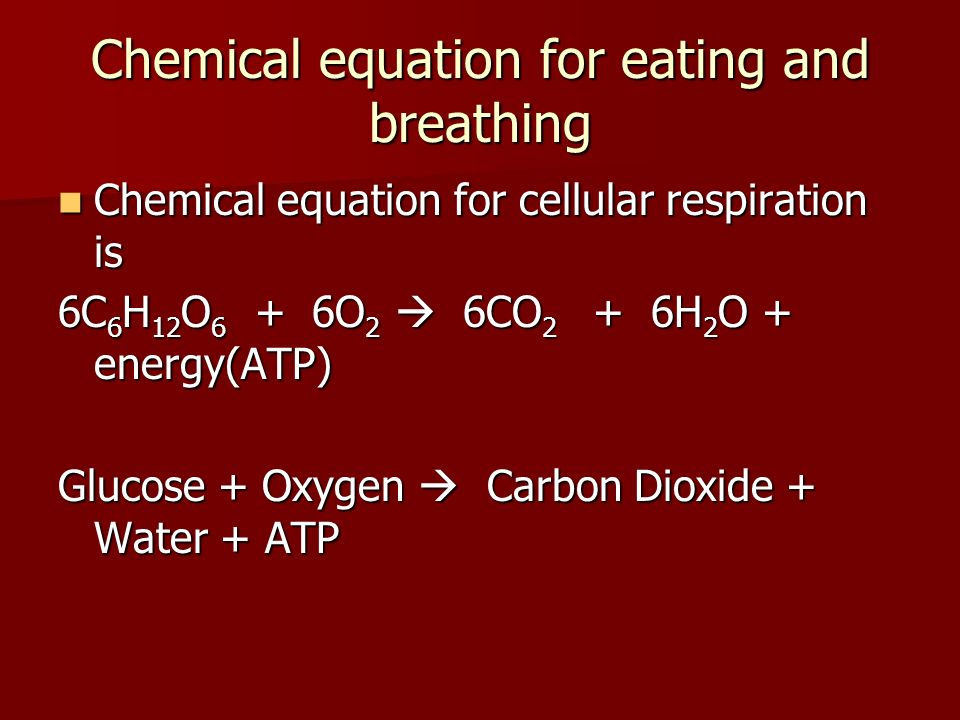 Chemical equation for eating and breathing Chemical equation for cellular respiration is Chemical equation for cellular respiration is 6C 6 H 12 O 6 +