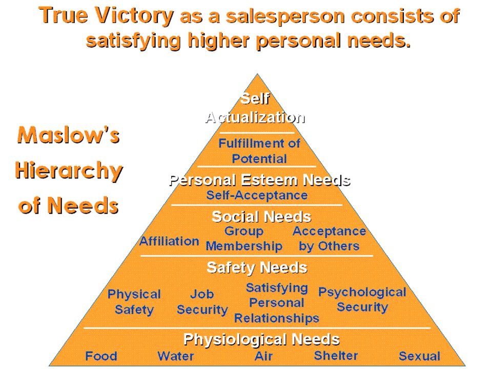 Golden Rules of Selling Skills16 Explain the difference between a customers needs, wants, and demands ?? Explain the difference between a customers ne
