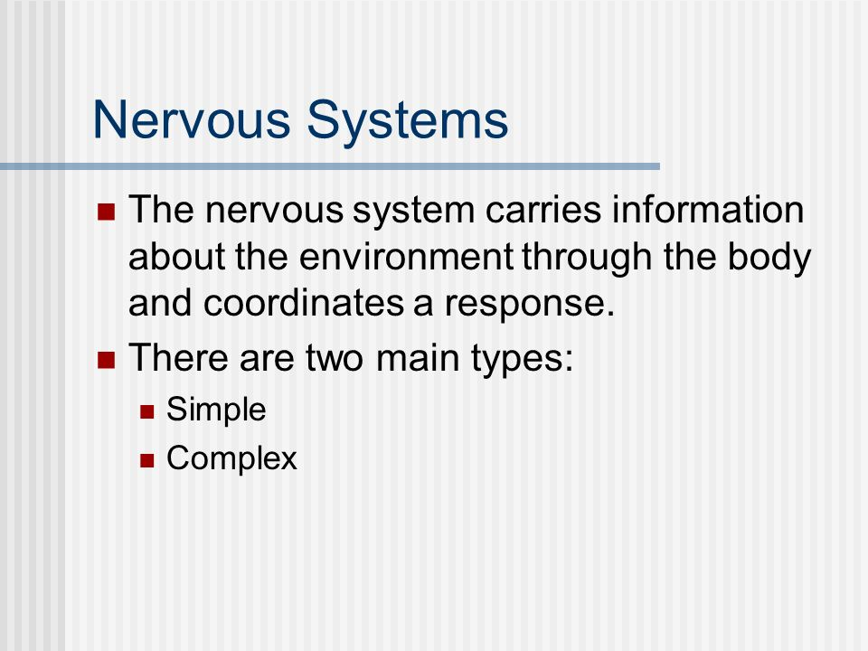Nervous Systems The nervous system carries information about the environment through the body and coordinates a response. There are two main types: Si