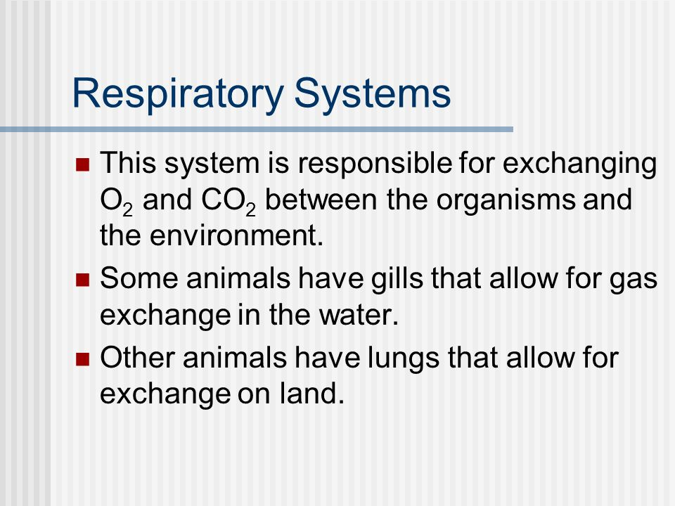 Respiratory Systems This system is responsible for exchanging O 2 and CO 2 between the organisms and the environment.