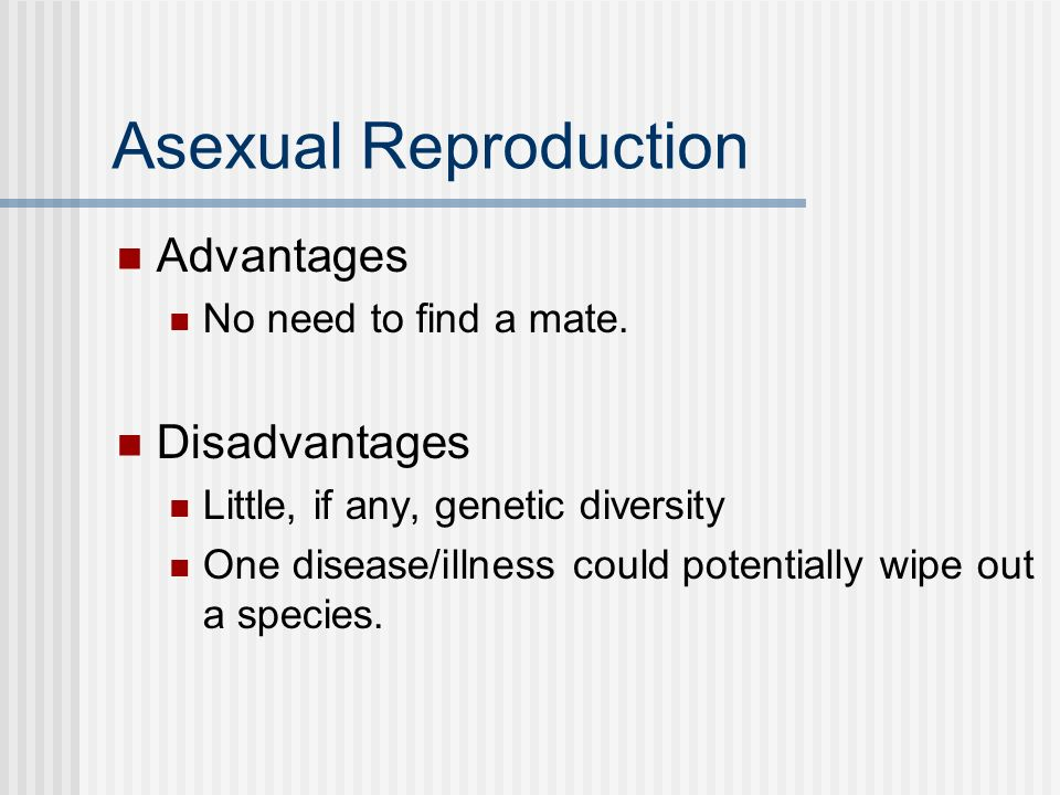 Asexual Reproduction Advantages No need to find a mate. Disadvantages Little, if any, genetic diversity One disease/illness could potentially wipe out