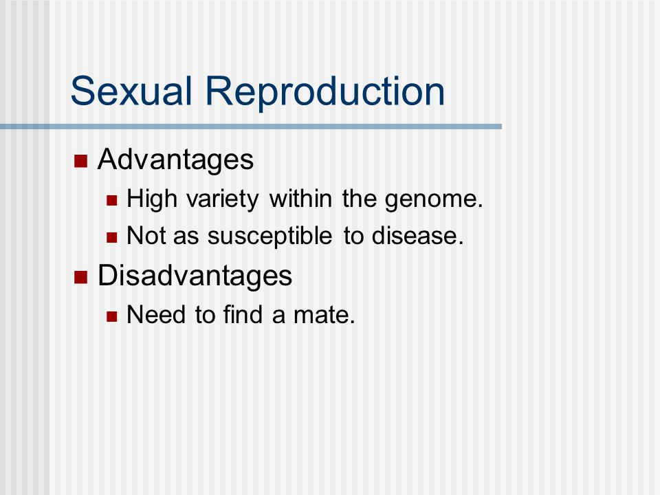 Sexual Reproduction Advantages High variety within the genome. Not as susceptible to disease. Disadvantages Need to find a mate.