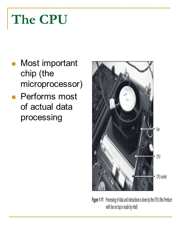 The CPU Most important chip (the microprocessor) Performs most of actual data processing