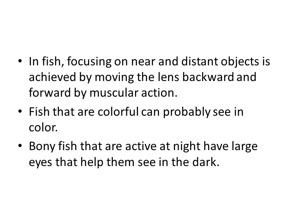 In fish, focusing on near and distant objects is achieved by moving the lens backward and forward by muscular action. Fish that are colorful can proba