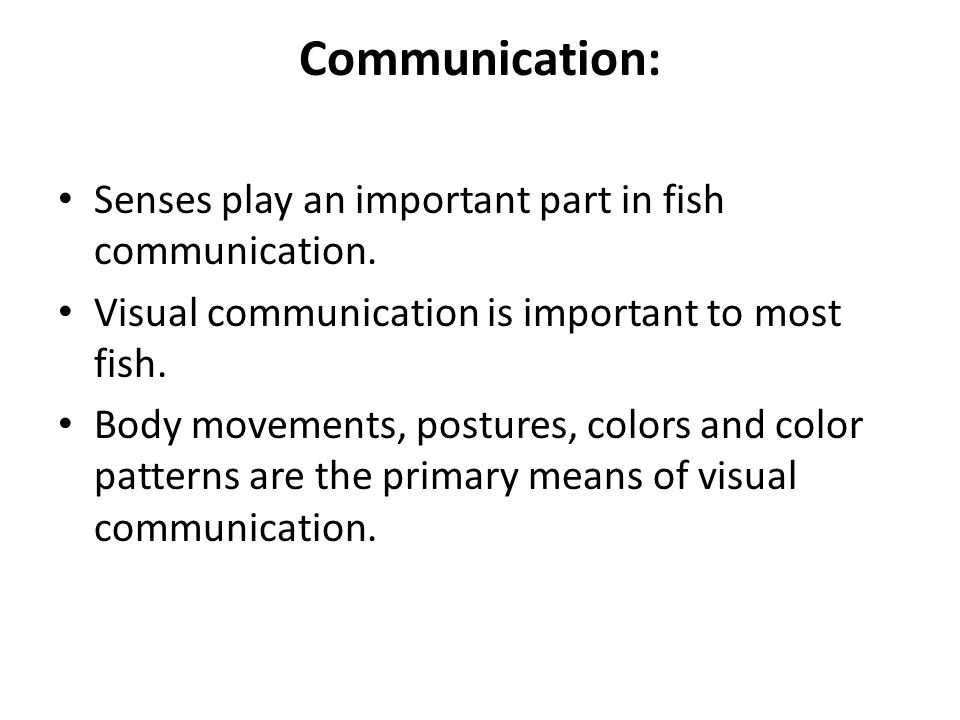 Communication: Senses play an important part in fish communication. Visual communication is important to most fish. Body movements, postures, colors a